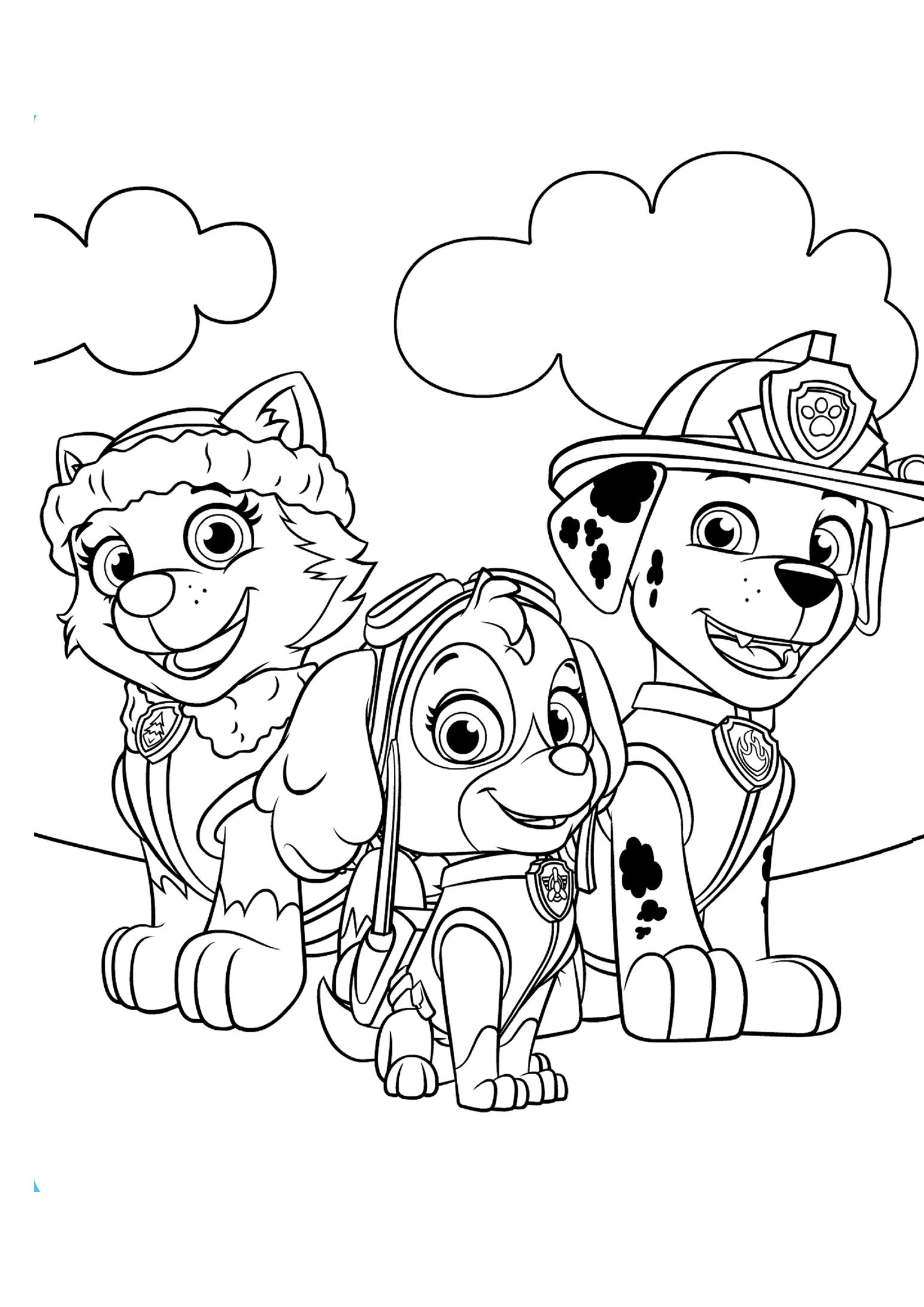 Раскраски щенячий патруль распечатать бесплатно формат а4 ...
