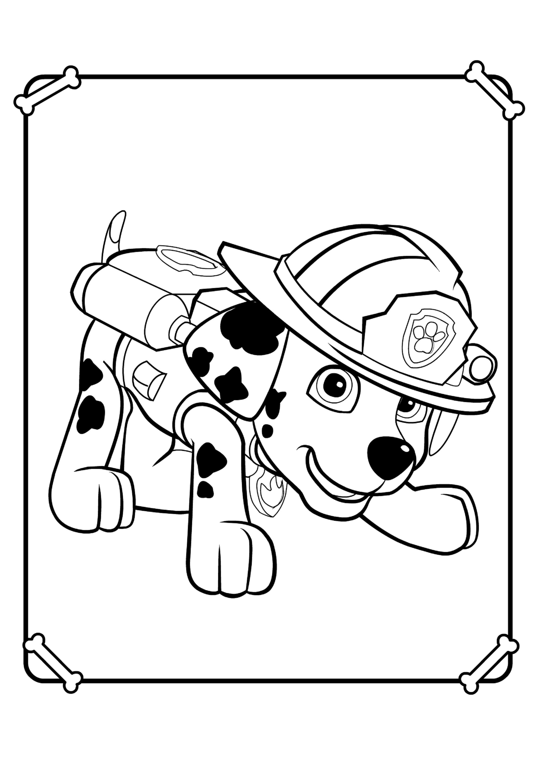 Щенячий патруль раскраски онлайн